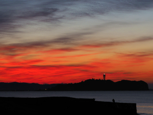 三が日の朝は海岸で-09