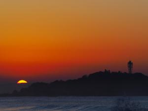 4日の朝も海岸で-05