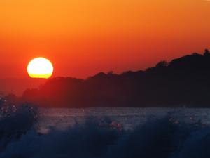 4日の朝も海岸で-07