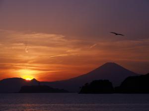材木座海岸からの江ノ島と富士山-5