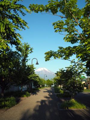 山中湖からのパール富士?_06